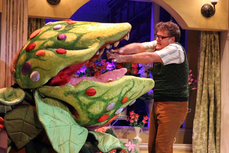 """Feed me, Seymour!"" Little Shop of Horrors's haunting signature line, with Alan Committie as the hapless Seymour. Photograph courtesy Montecasino Theatre."